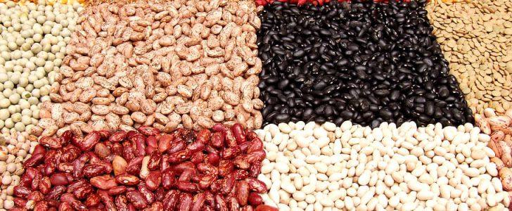 qué alimentos son ricos en fibra