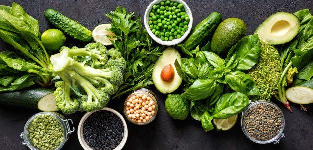 alimentos que contienen proteína